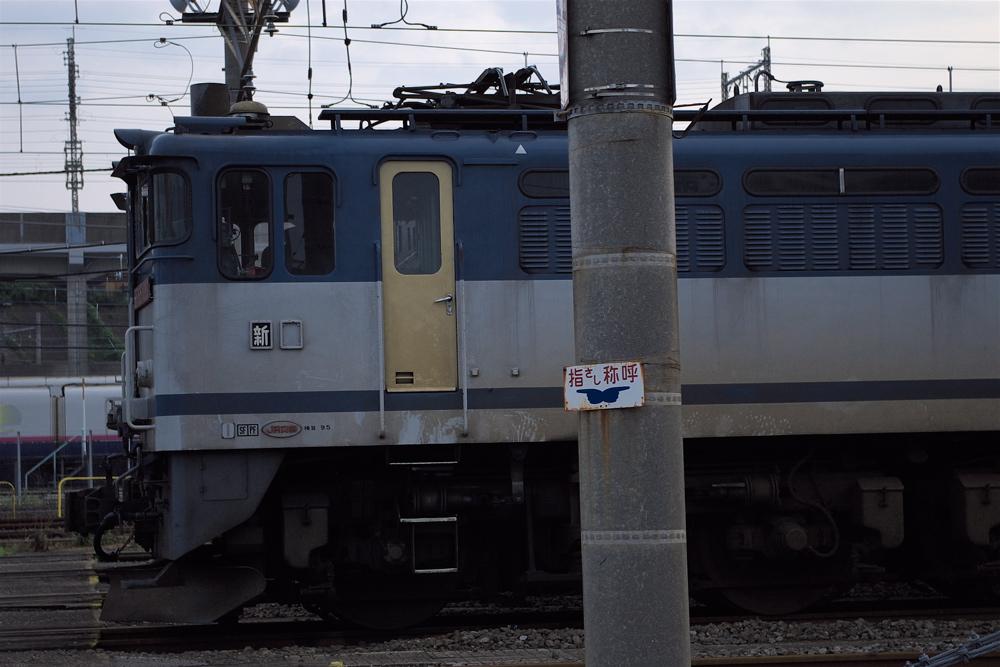 Imgp61552